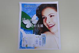 Banner de PVC imprès amb una impressora eco-solvent WER-ES3201 de 3,2 m (10 peus)